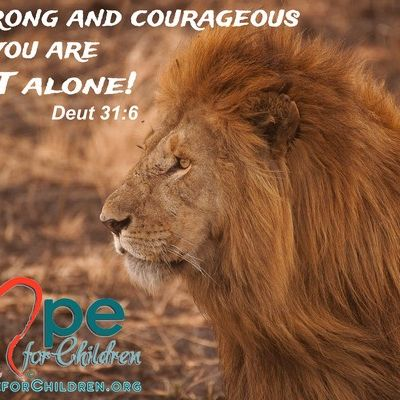 Be strong and courageous you are not alone ~Deuteronomy 31.6 #ArkofHope