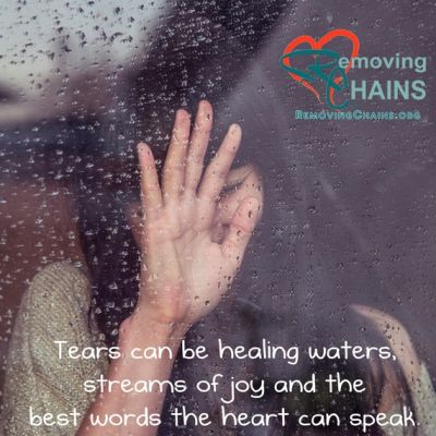 Tears can be healing waters, streams of joy and the best words the heart can speak ~William Paul Young