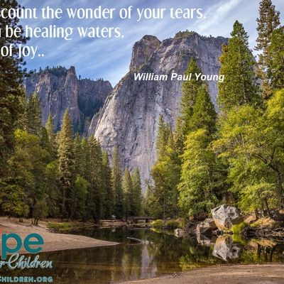 Don't discount the wonder of your tears. They can be healing waters… streams of joy ~William Paul Young